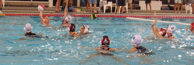 Waterpolo 038